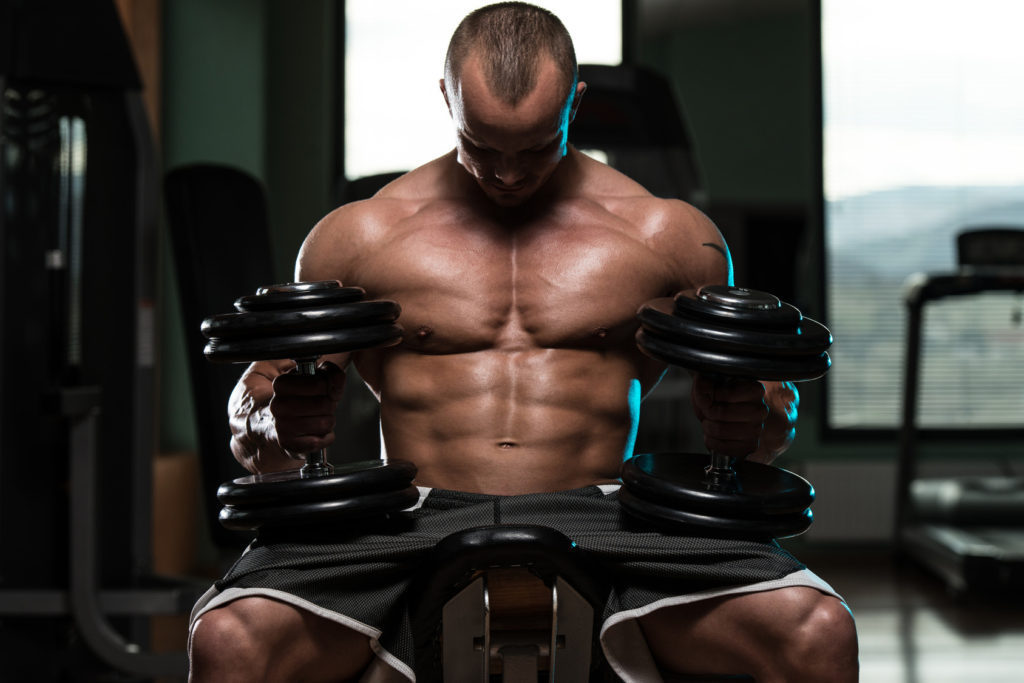 Muscle Building Process