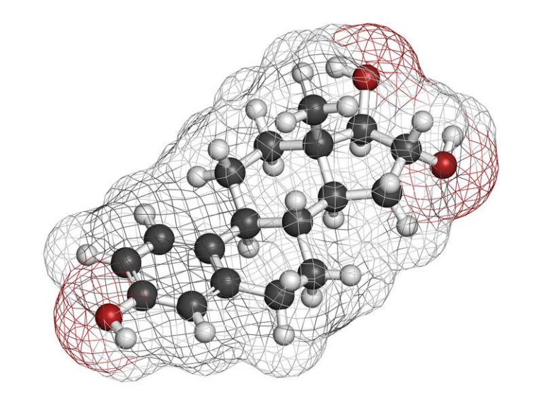 Aromatase Inhibitors (AIs) vs. Selective Estrogen Receptor Modulators (SERMs)