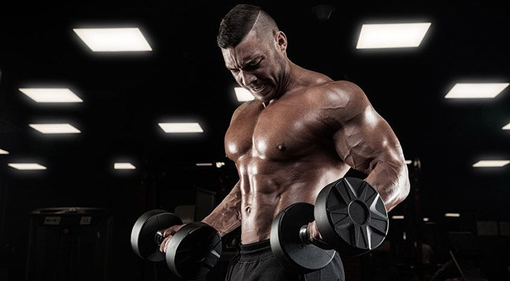 How to Choose the Best Bulking Stack