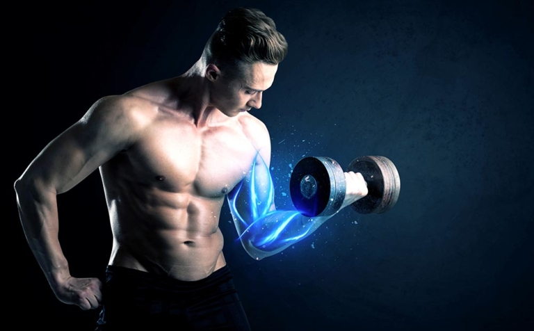 The Science of Building Muscles