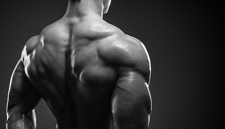 Best Steroid Pills for Bulking