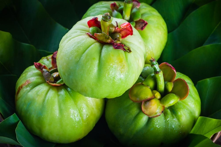 What Is Garcinia Cambogia Used For?