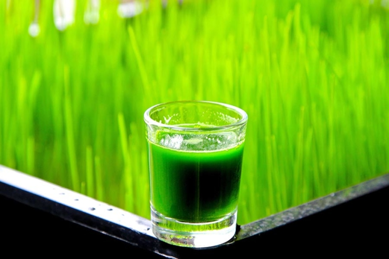 What are the Benefits of Wheatgrass?