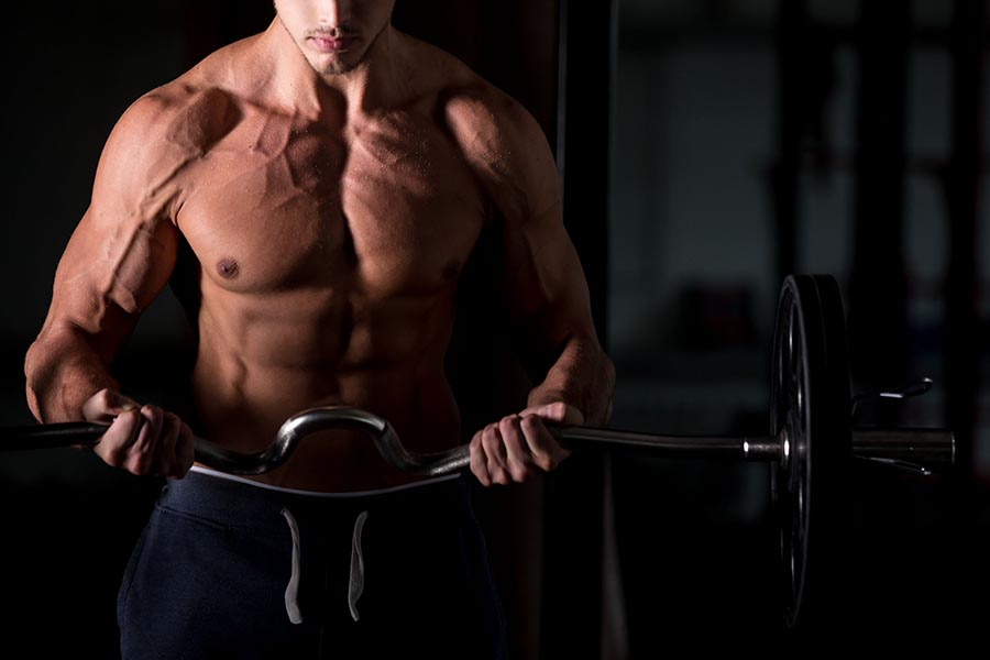 Muscule Hypertrophy