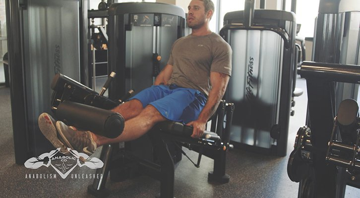 what muscles do leg extensions work
