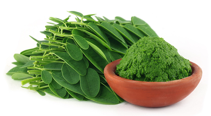 Can You Use Moringa Oleifera for Weight Loss?