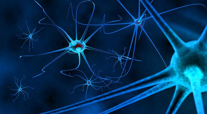 nerve health