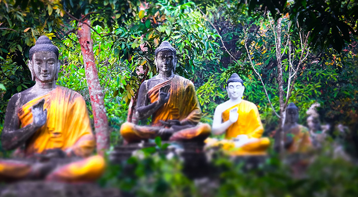 9 Buddhist Quotes You can Learn From
