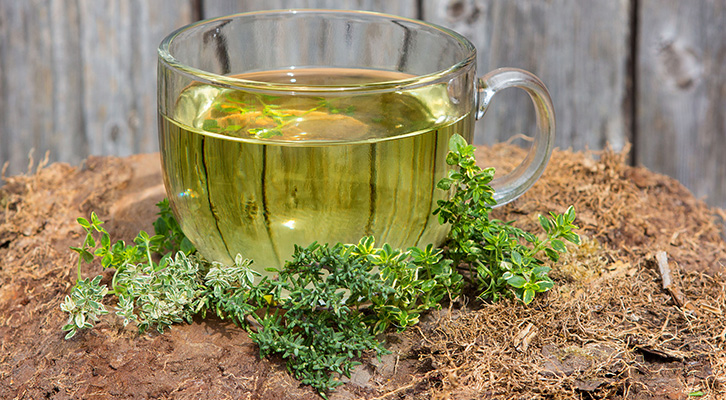 6 Reasons to Drink Thyme Tea