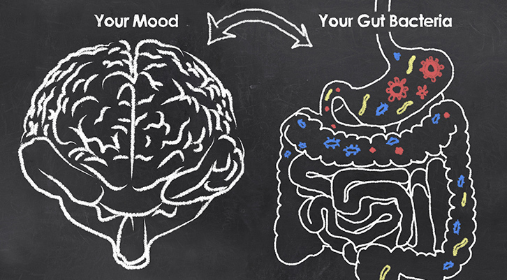 The Connections between Gut Bacteria and Mood
