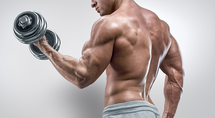 Bicep Aesthetics: Increasing Your Bicep Peak