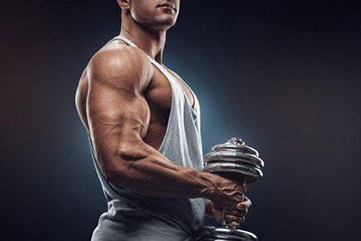 Sale muscle arm bicep image